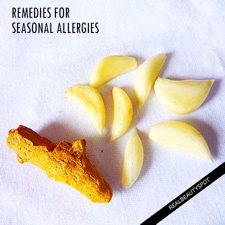 home remedies for seasonal allergies theindianspot