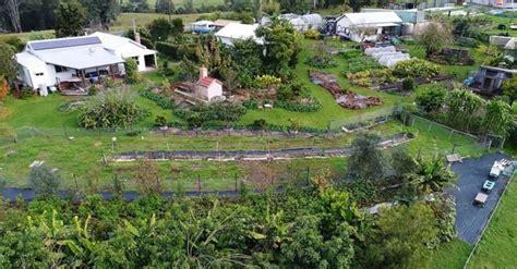 acre permaculture farm  australia feeds  families