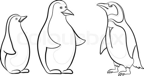 Emperor Penguin Outline by Antarctic Emperor Penguins Black Contours On White Background Vector Stock Vector Colourbox