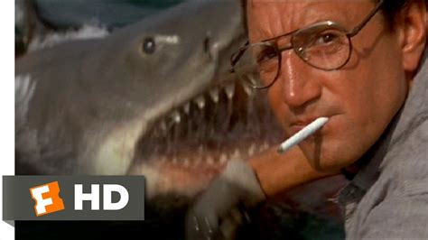 you re gonna need a bigger boat clip maxresdefault jpg