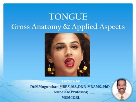 anatomy of the tongue slideshare tongue gross anatomy applied aspects dr n mugunthan m s