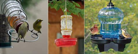Tempat Makan Burung Liar menjadikan halaman rumah sebagai habitat bagi burung liar