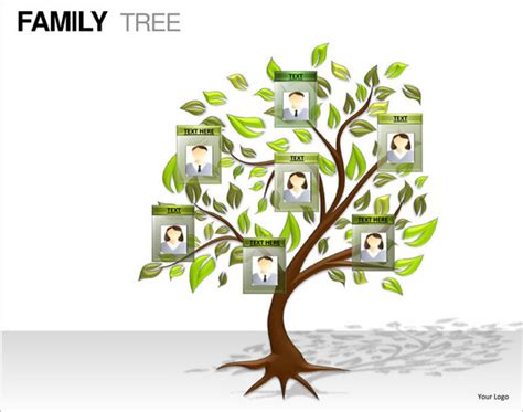 tree template for powerpoint powerpoint family tree template 10 free sle exle