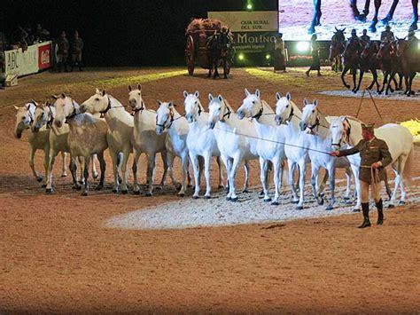 salon internacional del caballo sal 211 n internacional del caballo sicab 2018 espect 193 culo