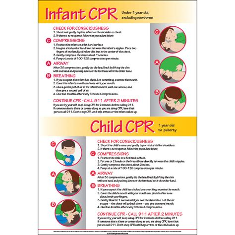 National Safety Council Cpr Card Template by Infant Child Cpr 12x18 Poster 5000 Cpr Inf Ch
