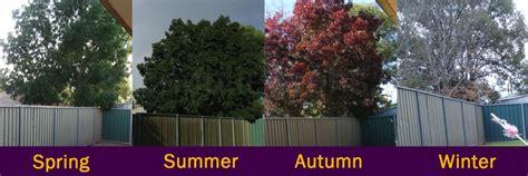 changing seasons geography  kids   school