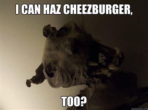 Cheeseburger Meme - i can haz cheezburger too