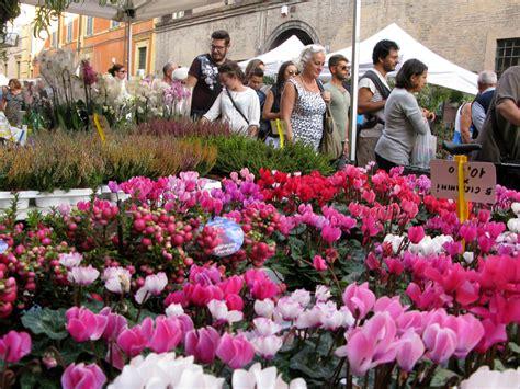 fiori modena in centro storico arrivano gi 224 i colori dell autunno con