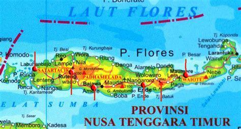 map  flores pt vip  travel bali hotels villas