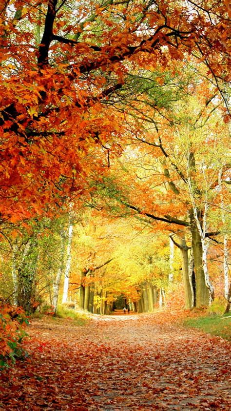 Cool Car Wallpapers For Desktop 3d Fall Ceiling by Cool Samsung Galaxy S3 Wallpapers