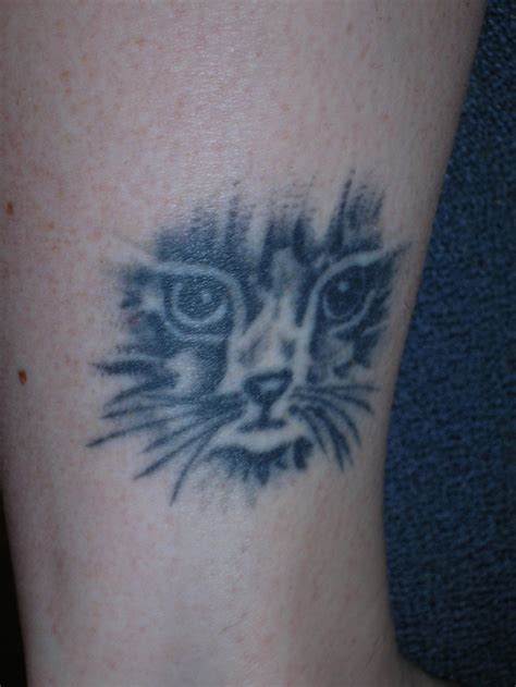 cat memorial tattoo 246 best cat memorial tattoos images on animal