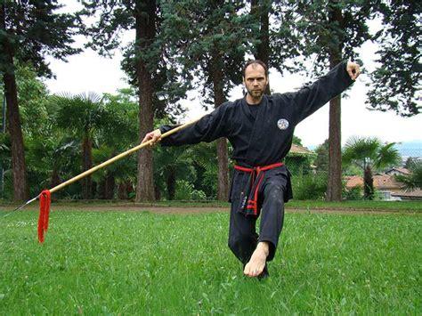 kung fu pavia kung fu pavia qian gong scuola feng huang