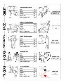 Bench Press Bowflex Lose Weight Lose Weight Upper Body Workout