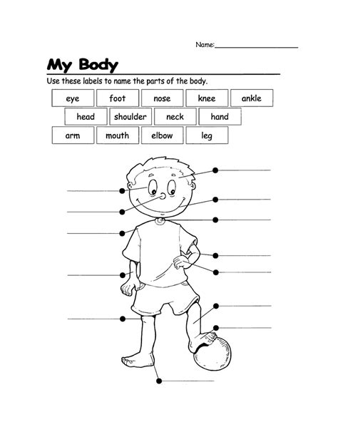 printable coloring pages parts parts coloring pages 2 png coloring home