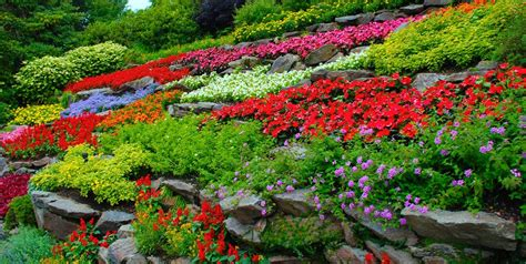 starting a flower garden how to start a flower garden 3 steps for beginners garden design
