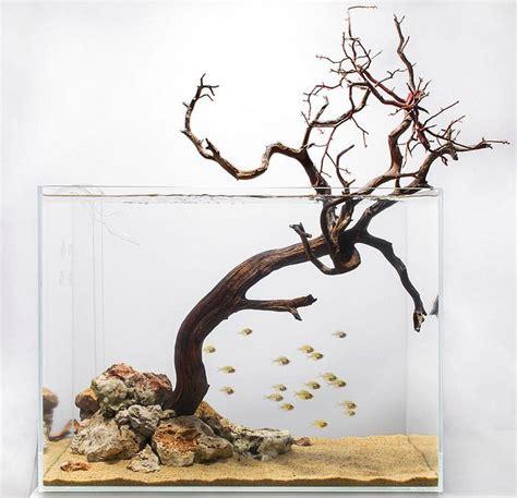 aquarium design group aquascape 25 best ideas about aquarium design on pinterest