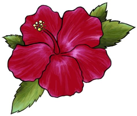 hibiscus tattoo for carina by katsuchicken on deviantart