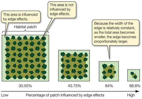 fragmentation diagram fragmentation diagram 28 images fragments vs islands