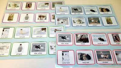 can you make copies of laminated paper tippytoe crafts arctic foxes water and bingo