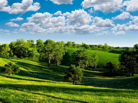 imagenes lindas verdes s 243 lo 20 d 237 as para el d 237 a de la tierra kalz el blog de vita