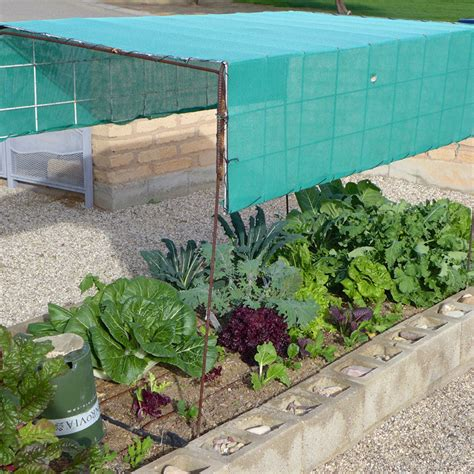 Desert Gardening Ideas For Your First Veggie Garden Shade Cloth Vegetable Garden