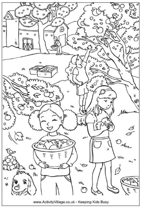 picking apples colouring page children picking apples