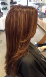 mocha color hair caramel mocha color brown hairs