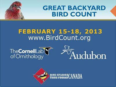 great backyard birdcount passinthru outdoors great backyard bird count 2013 feb 15