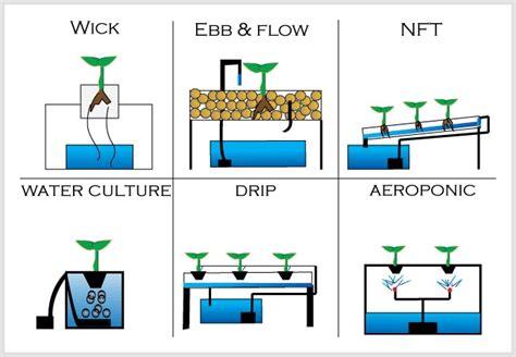 tips berkebun hidroponik mengenal hidroponik untuk pemula share the hidroponik mulai dari mana hidroponiq