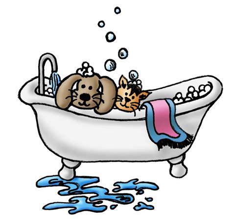 puppy grooming grooming county pet grooming florissant missouri