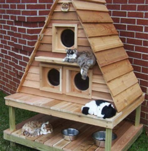 Outdoor Cat House Outdoor Cat House Building Plans Free Building Plans Outdoor Cat House