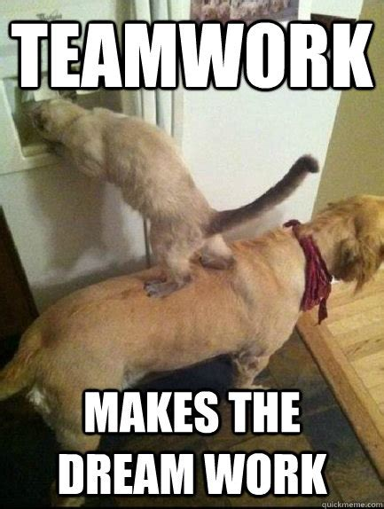 Teamwork Meme - teamwork makes the dream work teamwork quickmeme