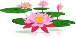 Lotus Therapy Lotus Therapy Center Marriage And Family Therapy And
