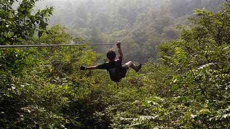 flying fox for backyard experience the adrenaline rush with these outdoor