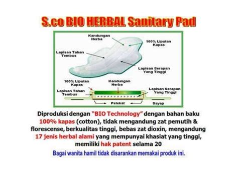 Pembalut Herbal S Co Pantyliner 089662949000 pembalut herbal sco