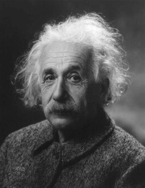 A Einstein Would by Albert Einstein