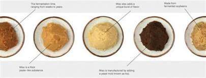 creamy miso chicken pasta steamy kitchen recipes