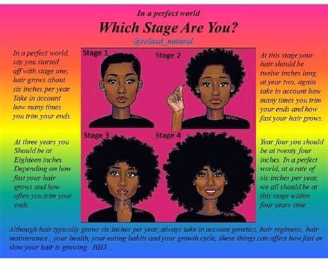 stages of natural hair stages of natural hair growth natural hair journey