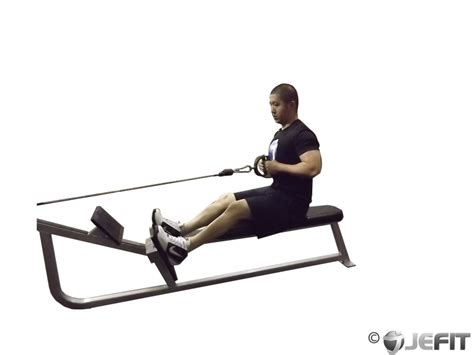 seated cable row cable seated row exercise database jefit best