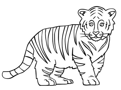 Baby Tiger Outline by Outline Of A Tiger Az Coloring Pages