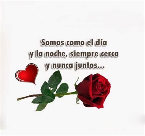 imagenes con rosas y frases bonitas preciosas imagenes de flores hermosas con frases de amor