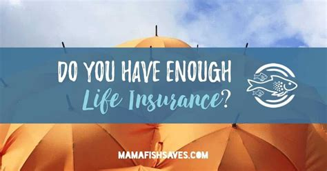 do you need to have insurance on a boat how much life insurance do you need mama fish saves