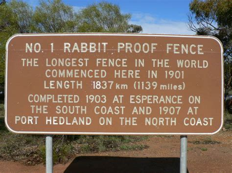 Rabbit Proof Fence Essay Techniques by Rabbit Proof Fence Essay Techniques Used In The Rabbit Proof Fence By Kunalsinghal Rabbit