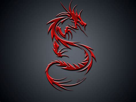 dragon tattoo background designs wallpapers wallpapers