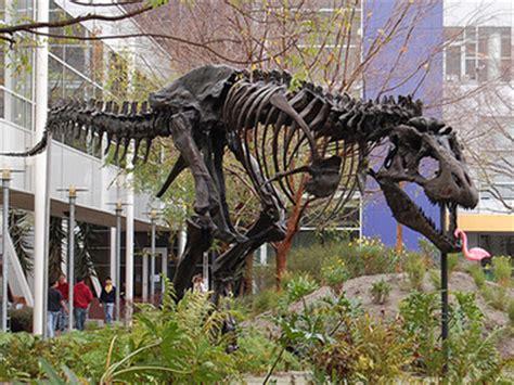 google images dinosaurs pet dinosaur the sticky egg