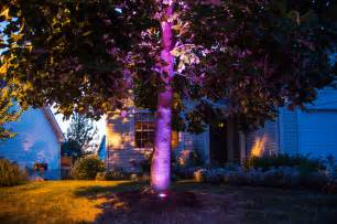 colored outdoor lights led color changing tree uplight contemporary landscape