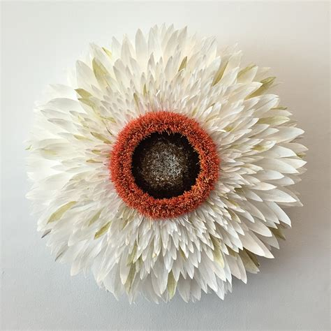 Pics Of Paper Flowers