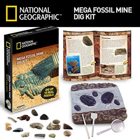 National Geographic Real Bug Dig Kit Berkualitas ultimate dinosaur science kit dig up and assemble a t rex skeleton arts entertainment hobbies
