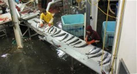 alaska fishing boat summer jobs pay alaska fishing jobs seafood industry employment jobmonkey