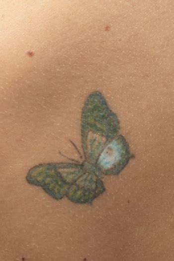 tato kupu kupu malam gambar 21 tato 3 dimensi 3d keren mengagumkan kupu malam